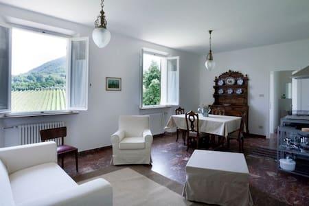 Monte Matello, euganei hills padua - Rovolon - Appartement