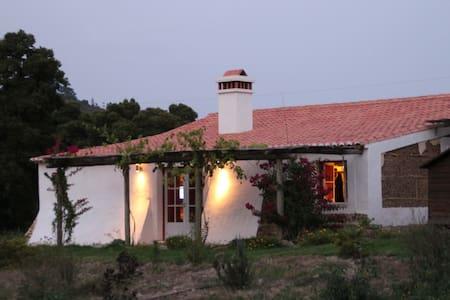 beautifull beachhouse alentejocoast