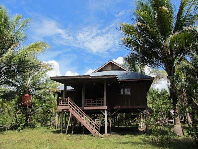 HOMESTAY UMA AWA - Mangoli Island