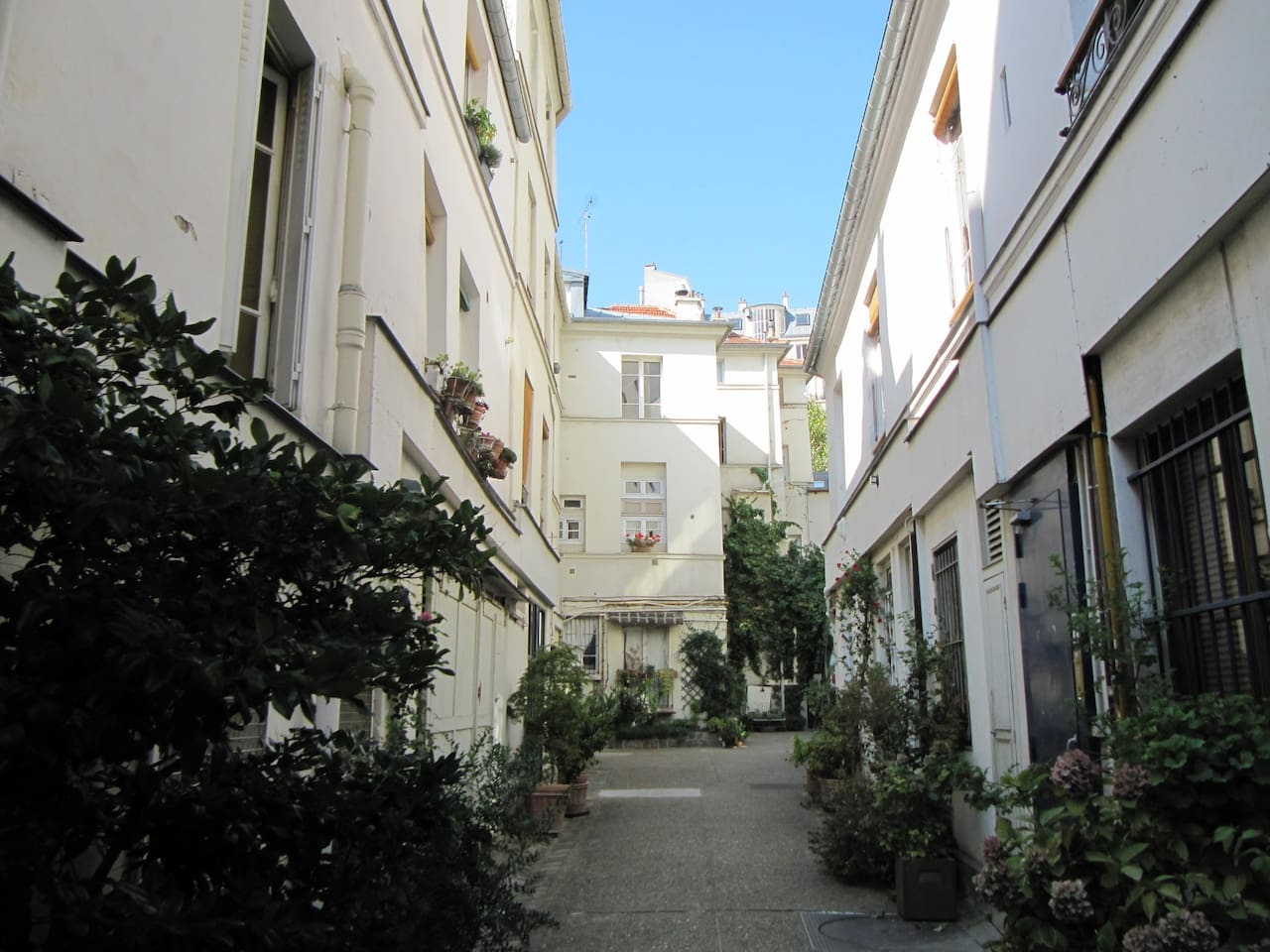 The private courtyard - la cour privée