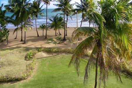 On the Beach, beautiful views - Rio Grande