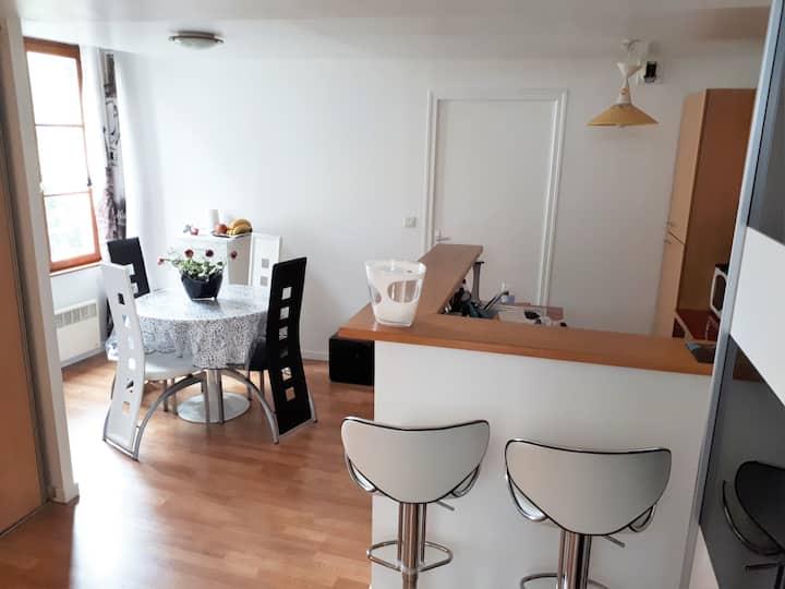 Appartement chaleureux, confortable centre ville