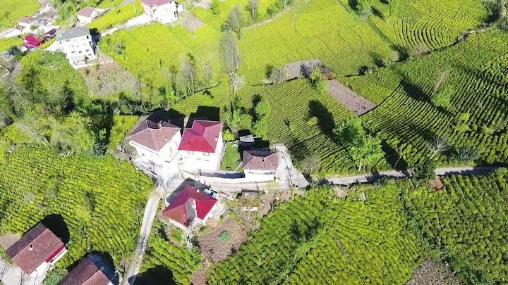 Rize Ayane Dağı manzaralı bahçeli lüks köy Villası