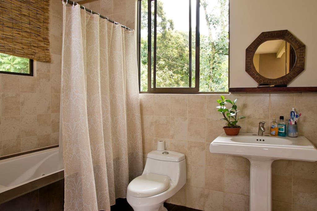 Charming home, rainforest backyard!