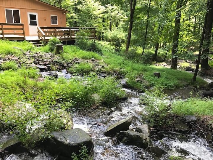 Bushkill Falls Cabin