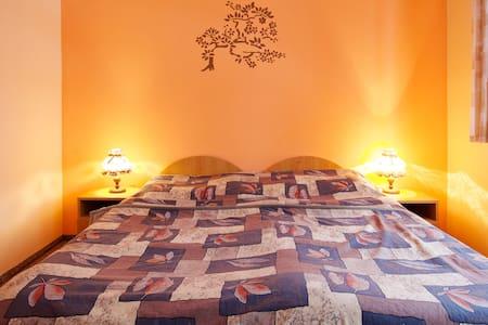 Double room in Hotel Králíček  - Turnov