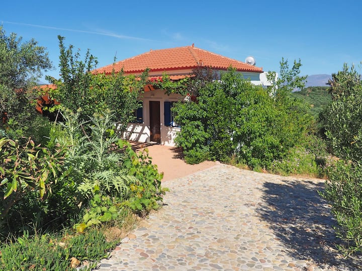 Olive Grove Madara - Little House