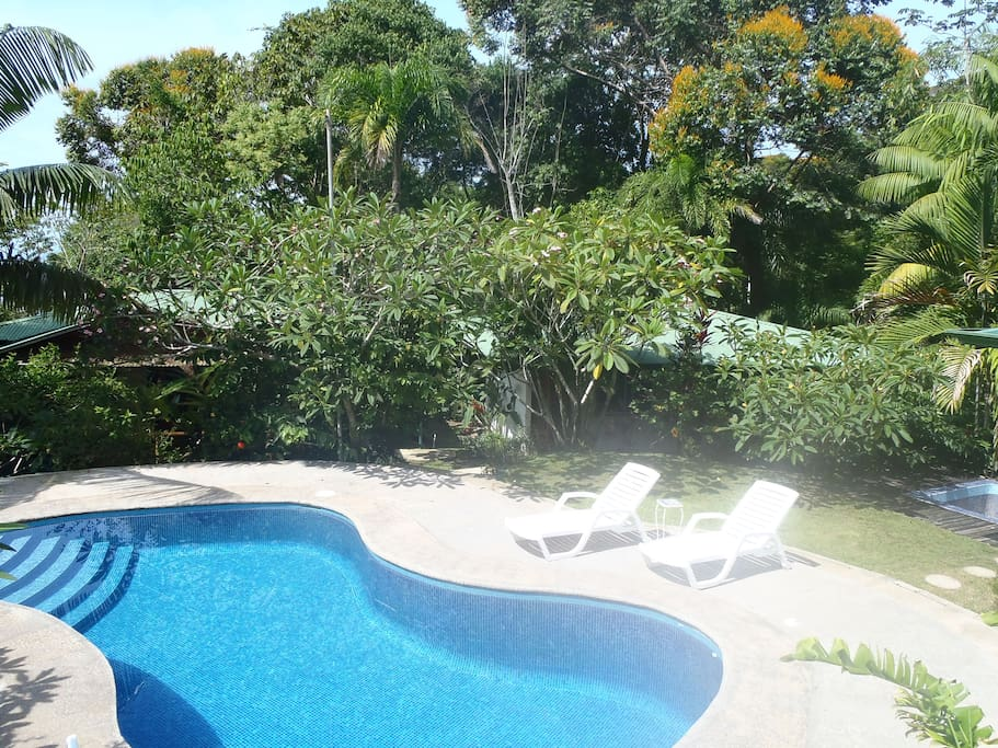 Pool area and Bungalows