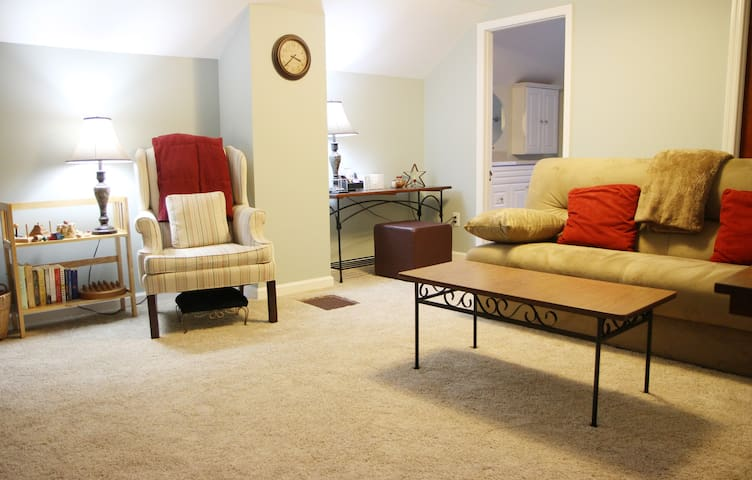 Comfortable Relaxing Downtown Suite