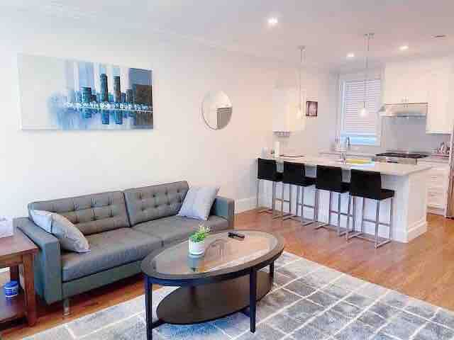 Luxurious 2b/2b in the center of Brookline (7)