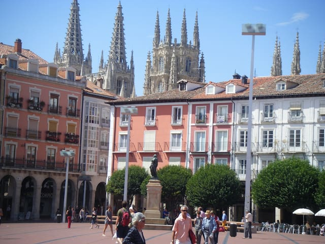 Disfruta desde la Plaza Mayor de Burgos - Burgos - Appartement