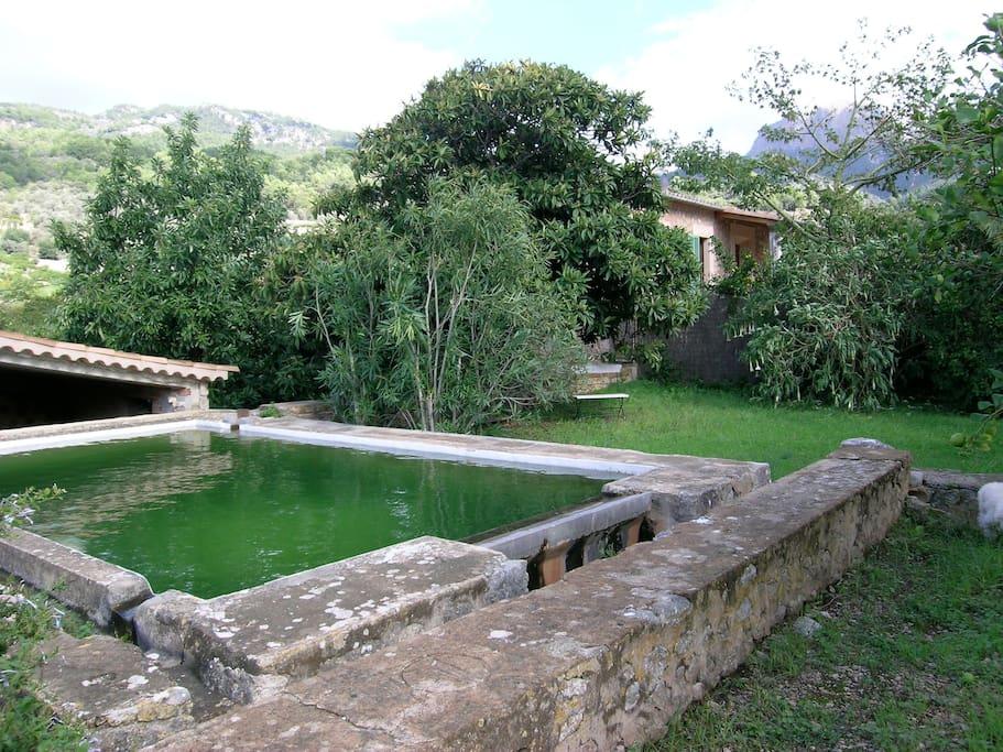 garden and reservoir