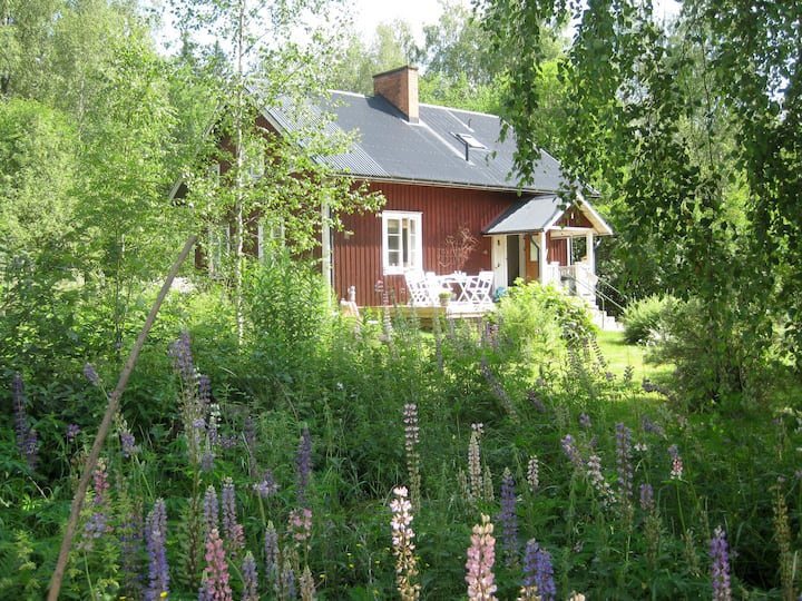 Beautiful comfortable country house