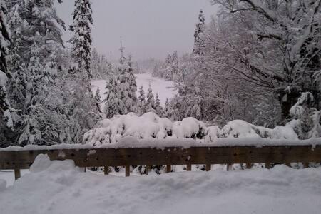 Winter paradise- peaceful & warm - Sainte-Agathe-des-Monts