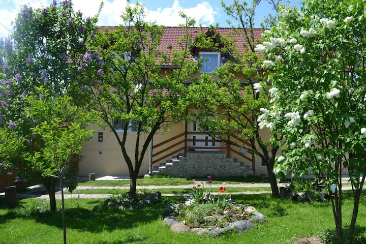 Transylvanian B&B near Sibiu - Porumbacu de Sus - Bed & Breakfast