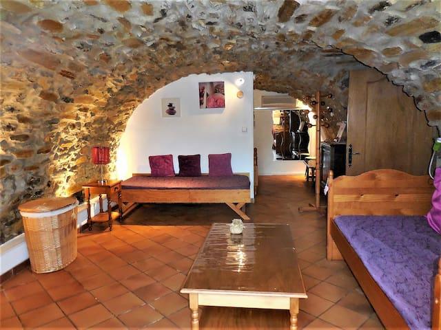Gîte l'Authentique en pierres de voûtes en Ardèche - Saint-Étienne-de-Fontbellon - Apartament