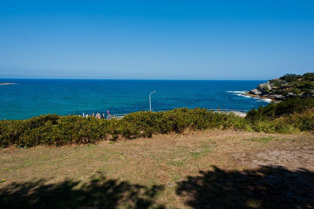 Ocean side flat  Bondi Beach