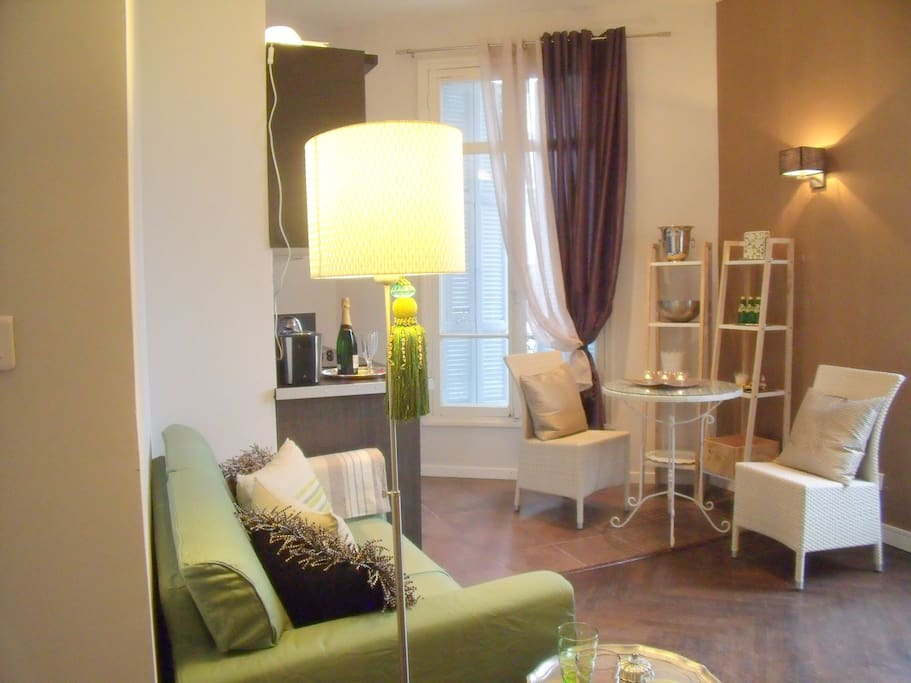 Apartment boutique style beach hotel negresco for Boutique hotel nice france