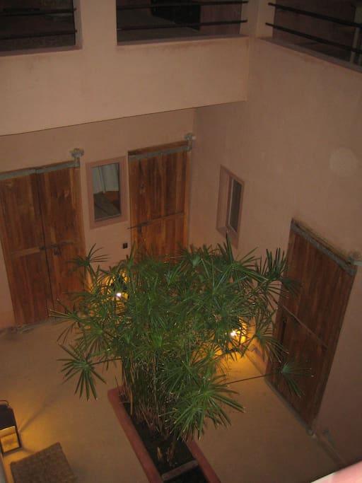 le Patio ouvert sur le ciel planté de papyrus surlequel donnent le salon du rez de chaussée et deux chambres