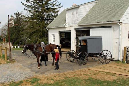 Paradise Amish Bed & Breakfast