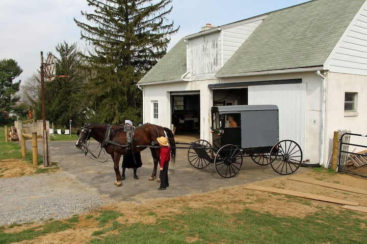 Paradise Amish Bed & Breakfast