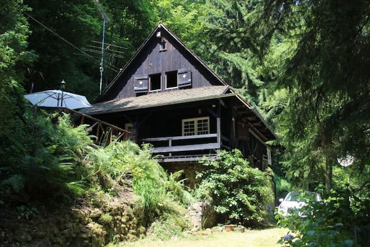 Schwarzwaldhaus - Wolfach - Huis