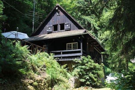 Schwarzwaldhaus - Wolfach