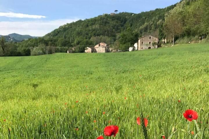 Casa Innamorati, nel parco dei Monti Sibillini!