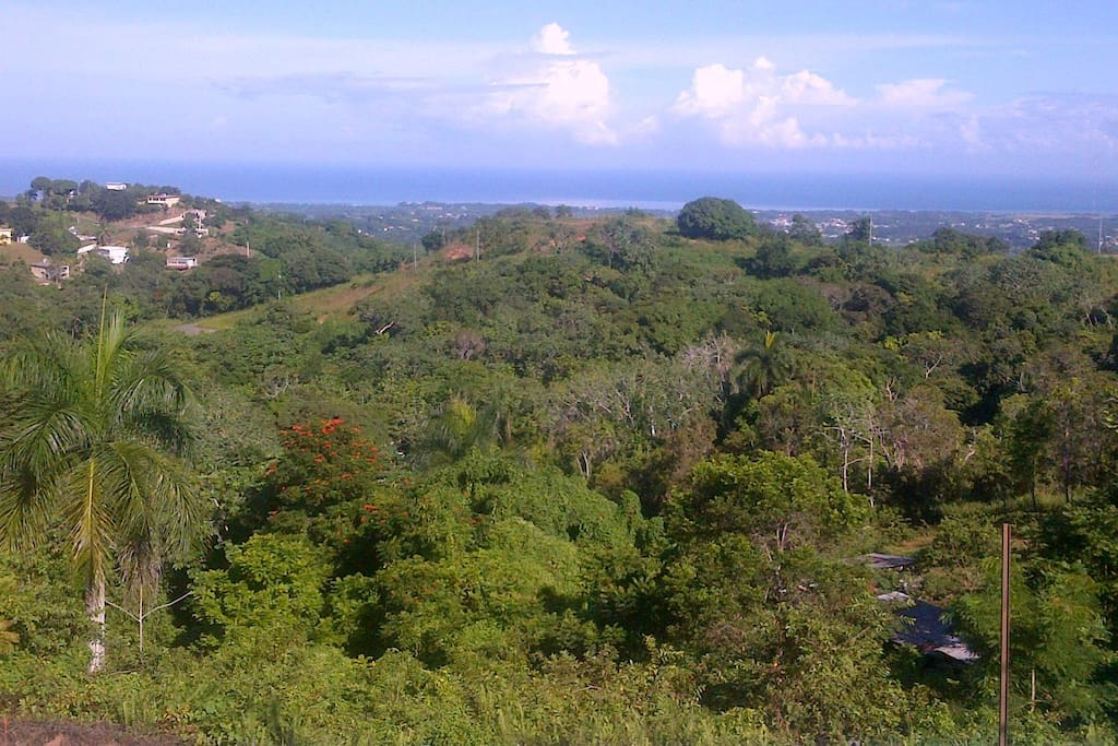 This is the view from the apartment's terrace in Atalaya.  This view is the Rincon/Aguada ocean view.