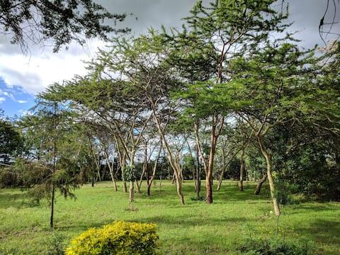 Acacia Nature Home (Room 1)