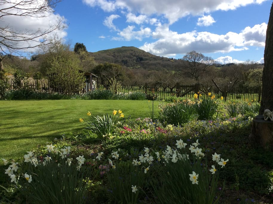 Views across the gardens towards The Malvern Hills Herefordshire Beacon