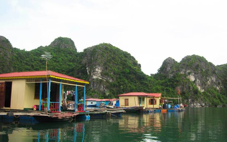 Halong Swan Cruise To Visit Bai Tu Tu Long Bay