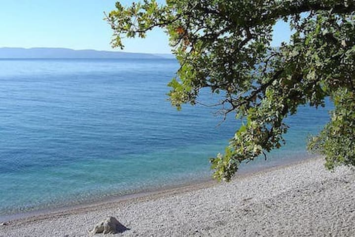 beach Slano 500 meters from the house