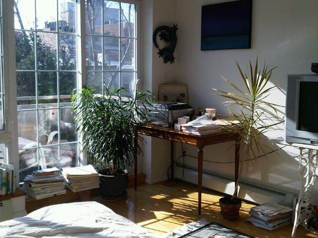 Sunny, Large, Park Slope Bedroom