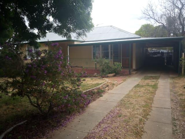 Homey Wagga house