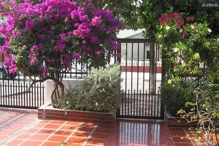 ready in Curramba? #4 - Barranquilla - Casa