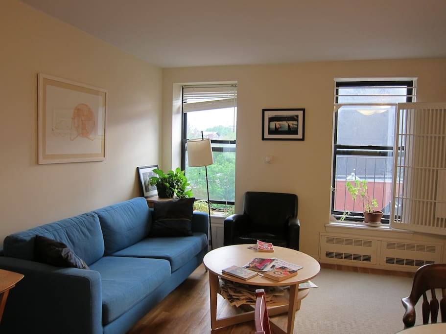 1 Bedroom Apt In Clinton Hill Apartments For Rent In Brooklyn