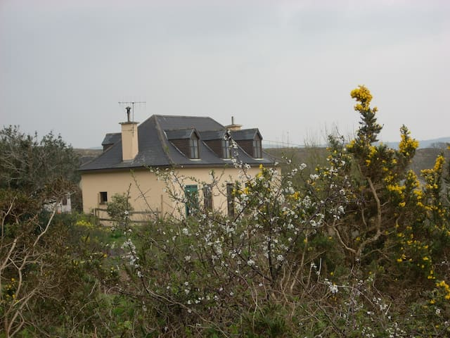 house from the garden in spring