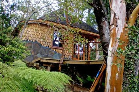 Enchanting Love  Cabin at Lake Tinquilco