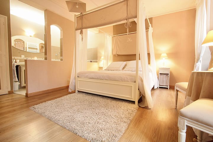 Bed and breakfast in the Chateau  - Viterbe - Apartment