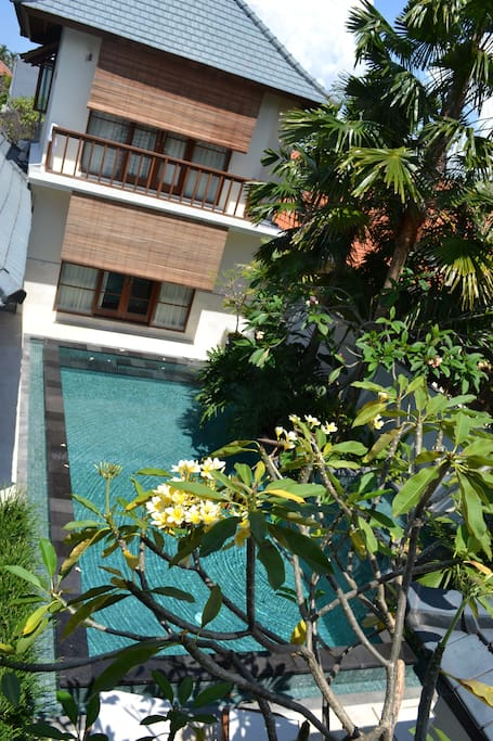 View of pool and main house from guest house.
