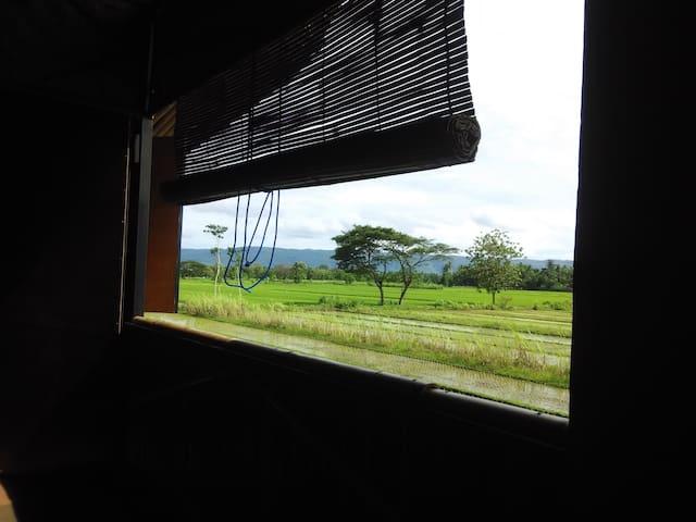 Jogja Bamboo Home stay