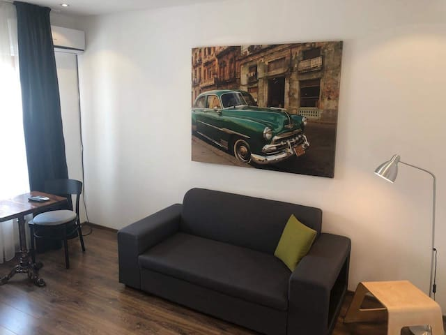 One bedroom apartment in the heart of the city