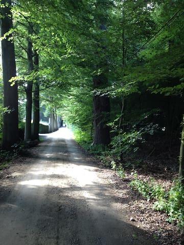 Kamer in landhuis bij het bos - Oostkamp - Huis