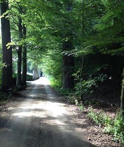 Kamer in landhuis bij het bos - Oostkamp