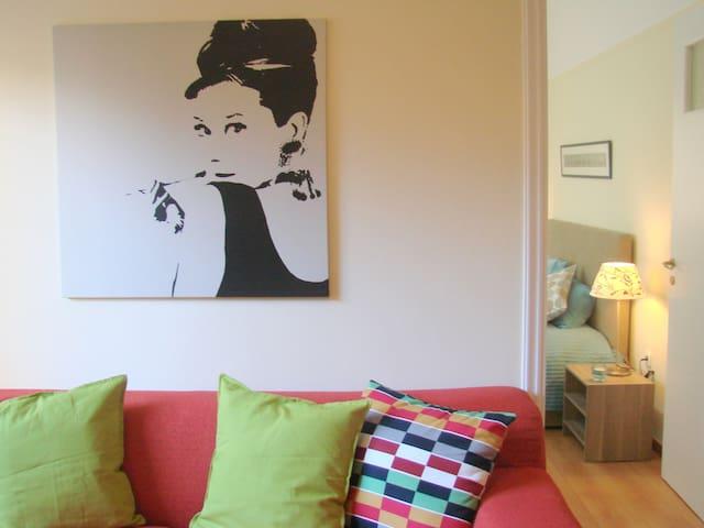 Cozy apartment in Placa - Athina - Apartamento