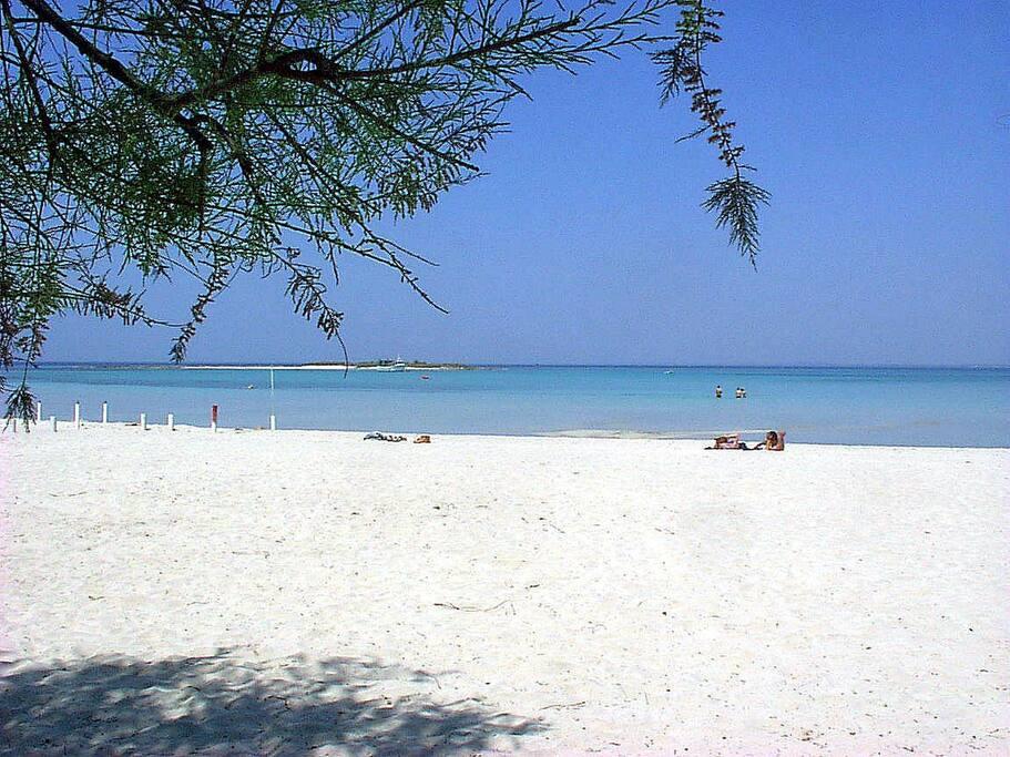 La spiaggia grande