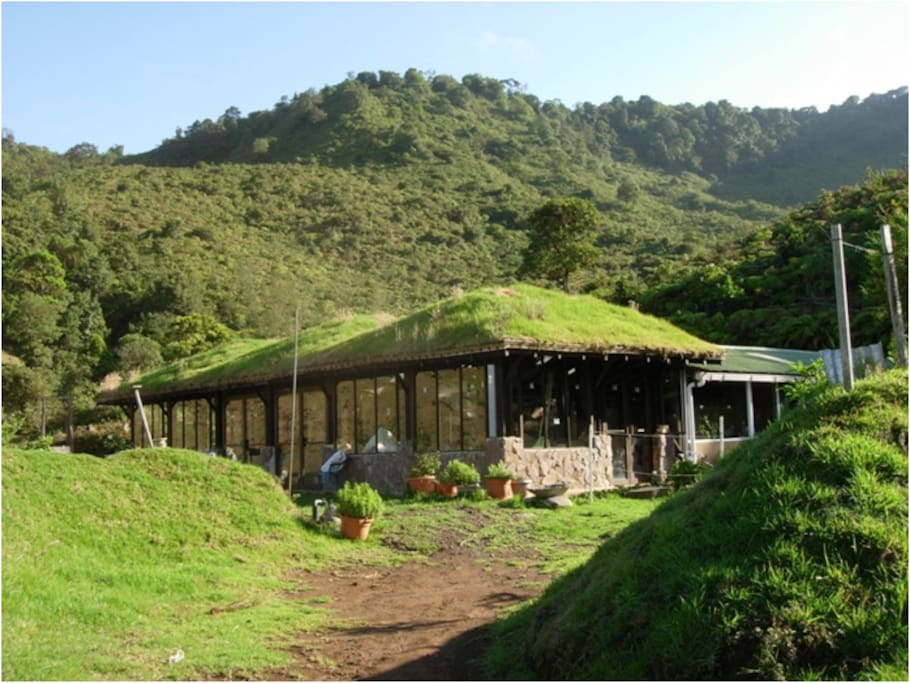 Same house with its original sod roof, now covered with a universal and waterproof roof.  You can compare the young forest with the previous photo about 5 years later.