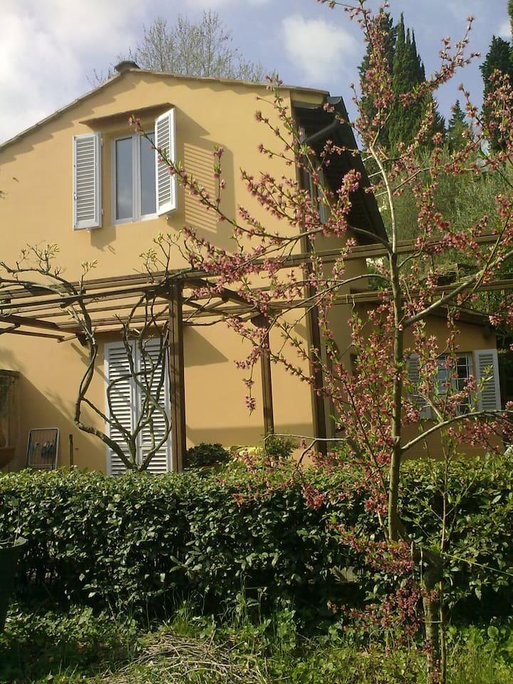 Il MelogranoFelice center Florence