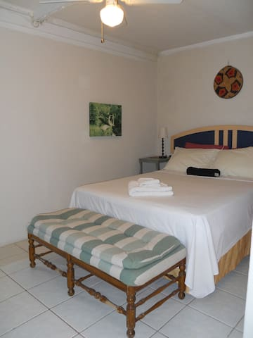 The Cassia 1 Bedroom Apartment Flats For Rent In Bridgetown Christ Church Barbados